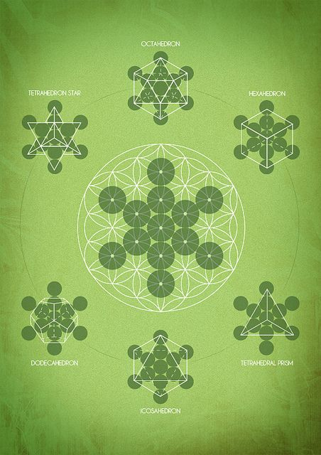 Platonic Solids In Nature There's something to b...