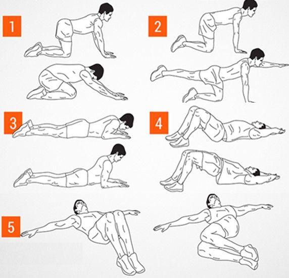 the 25  best exercicios para coluna lombar ideas on