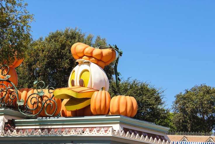 Tim Alcoser's 9/14/12 DLR Photo Report | Disneyland News Today: Dlr Photo, Photo Reports, 91412 Dlr, Alco 91412