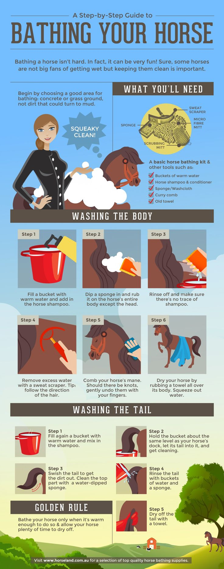 Step by step guide to bathing your horse