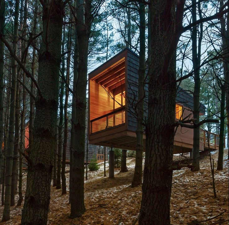 These wooden dwellings sit atop concrete piers on a sloping site in a Minnesota woodland