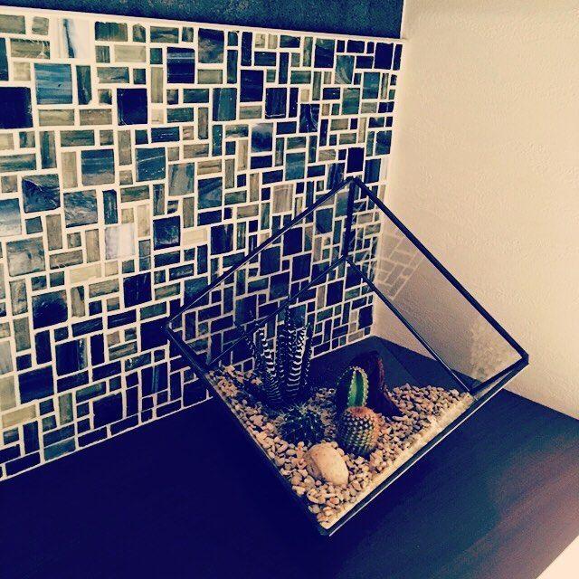 【ud0906】さんのInstagramをピンしています。 《トイレに小物のサボテンを置いてみました♪ #テラリウム#ガラス#サボテン#グリーン#緑#癒し#観葉植物#トイレ#タイル#名古屋モザイク#カウンター#間取り#ニューヨーカーガラス#世界中のwakuwaku集めました#インテリア#家#新築》