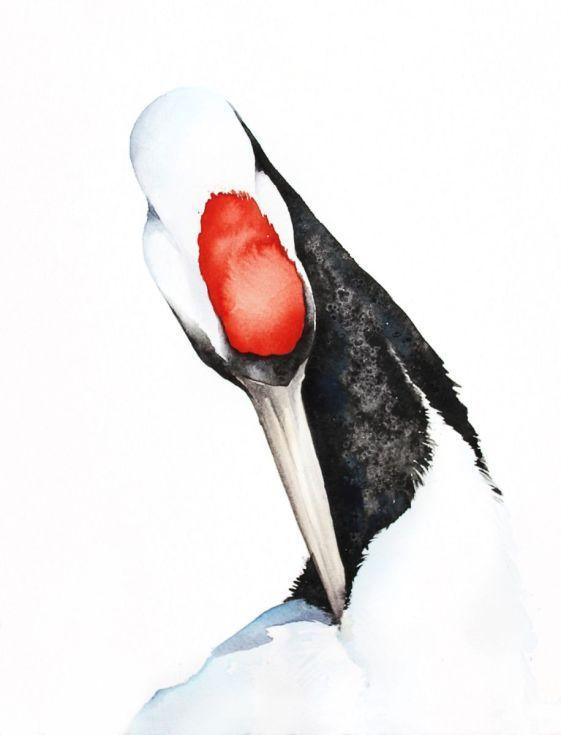 ARTFINDER:  Red-crowned Crane #2,  bird, birds, ... by Karolina Kijak - Original watercolors of Crane Paper 300g,  100% cotton size 32x41cm  Follow me on facebook: https://www.facebook.com/kijakwatercolors