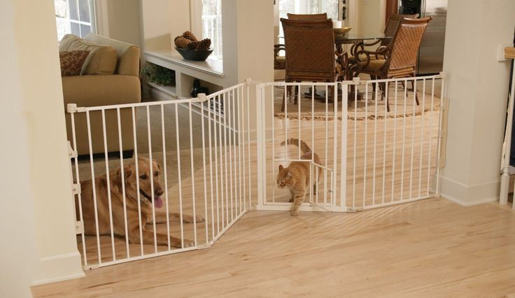53 Best Indoor Cat Barriers Images On Pinterest Baby
