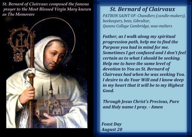 St Bernard Of Clairvaux Quotes: 1000+ Images About Saints On Pinterest