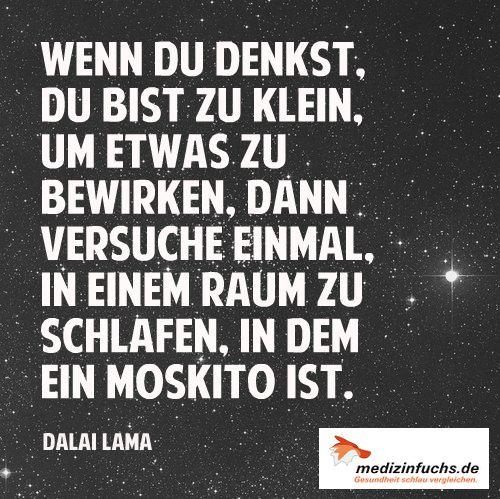 #Motivation #Energie #DalaiLama #Buddhismus #Freude #Spass #Lachen #Zitat #Quote // www.medizinfuchs.de ist der beste #Preisvergleich in #Deutschland für #Medikamente. Sparen Sie bei der Bestellung von #Medizin bzw. ihrer #Arzneimittel bis zu 76 % gegenüber dem Kauf direkt in der #Apotheke. #Medizinfuchs vergleicht die Preise von über 180 Versandapotheken. Jetzt überzeugen lassen: www.medizinfuchs.de/