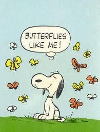 """Butterflies Like Me!""Beautiful Butterflies, Charli Brown, 3D Cartoons, Snoopy Spring, Peanut Snoopy, Retro Snoopy, Charlie Brown, Butterflies Beautiful, Peanut Gang"