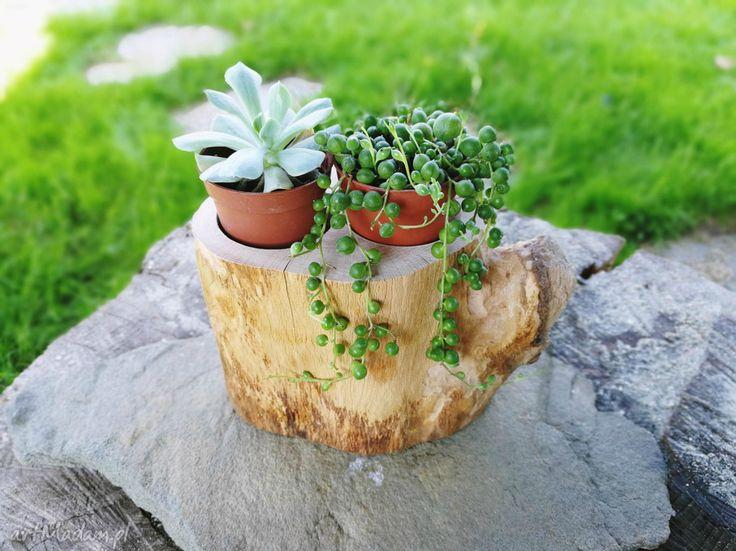 drewno dekoracje drewniany kwietnik na sukulenty
