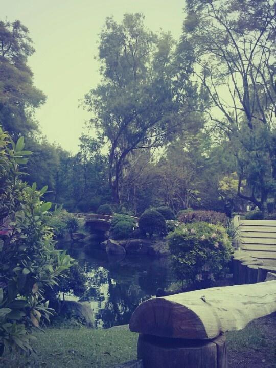 Japanese yard...