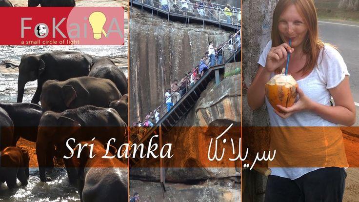 mini idea 173 | Travel on a budget Sri Lanka الفكيرة 173 | السفر بأقل ال...