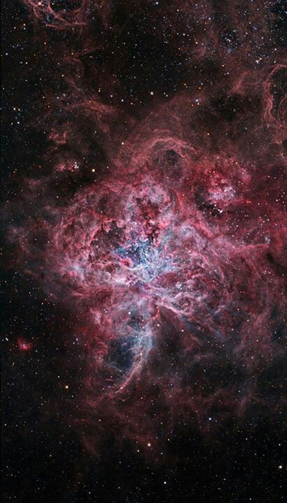 The Tarantula Nebula (also known as 30 Doradus) is an H II region in the Large Magellanic Cloud (LMC). It was originally thought to be a star, but in 1751 Nicolas Louis de Lacaille recognized its nebular nature.