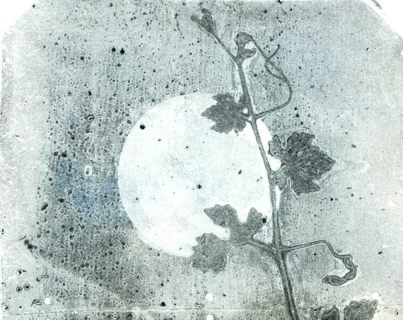 gelatin monotype on vintage dictionary paper