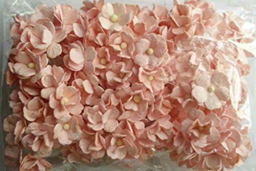 SOFT PINK 100 Mulberry paper 2 layer Flower Wedding Scrap... https://www.amazon.com/dp/B01561IB8A/ref=cm_sw_r_pi_dp_x_gppoyb6S0M5FA