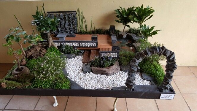 Miniature garden by Barbara Eke