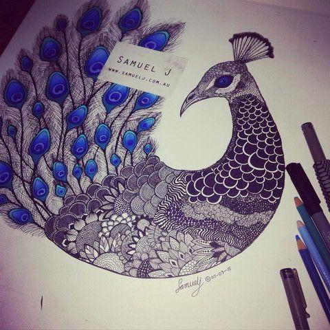 'The Peacock' – Samuel J Art