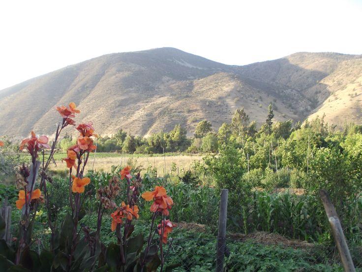 Illapel ,Chile