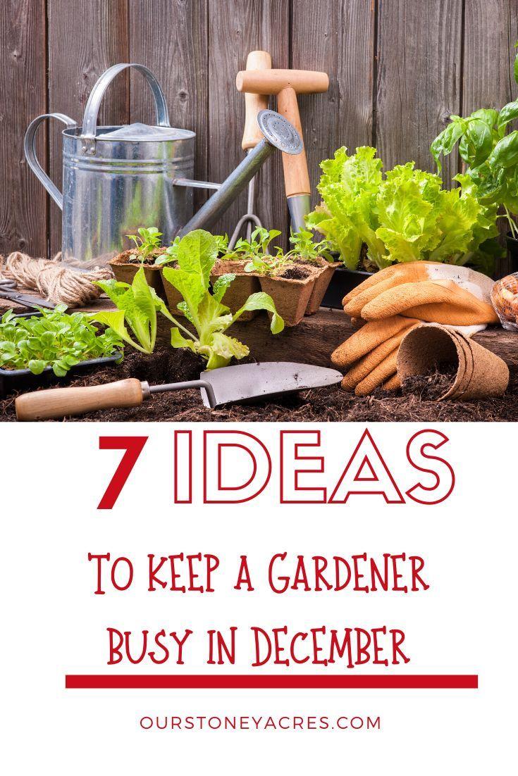 54fa2e273d10923de55ffbd575ae18a8 - What Can Gardeners Do In Winter