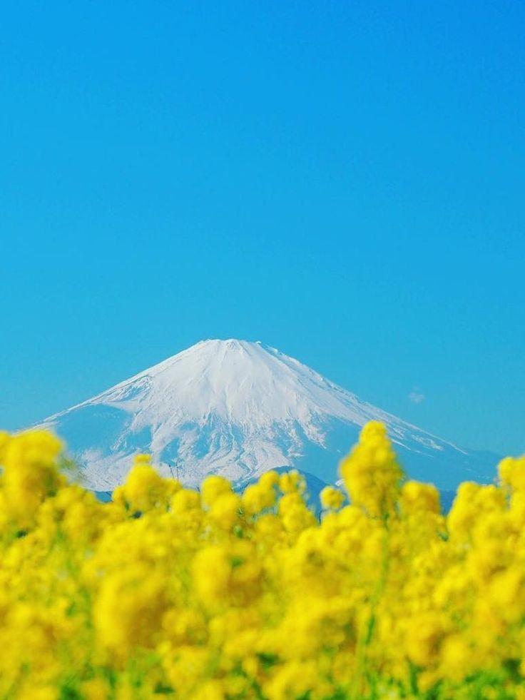 Azumayama Park, Kanagawa, Japan, Mt,Fuji