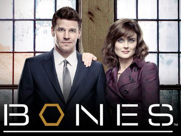 My new obsession and Netflix is making it go by so fast. This show is always providing me fun facts I can use to impress my friends.  http://www.fox.com/bones/
