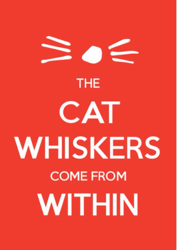 Dan and Phil The Cat Whiskers Come From Within poster
