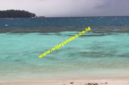 PT. Wijayatama wisata Kantor pemasaran pulau seribu Phone : 021-68274005   80880526   80889688 mobile : 08159977449 Email : pulauseribu@wijayatama.co.id website : http://wijayatama.co.id
