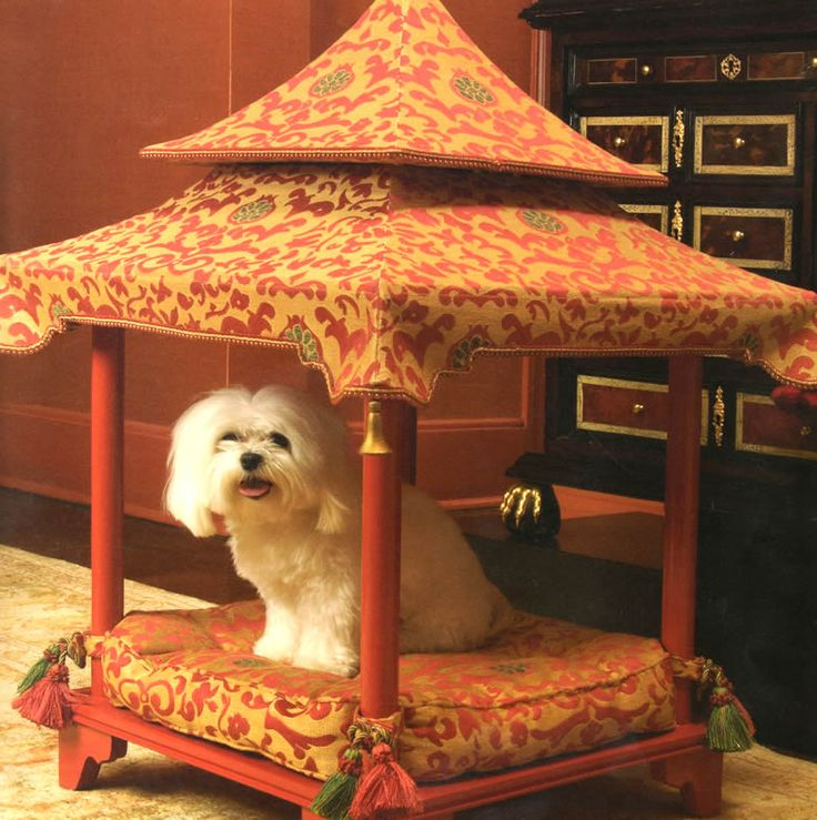 47 Best Images About Diy Canopy Dog Bed On Pinterest
