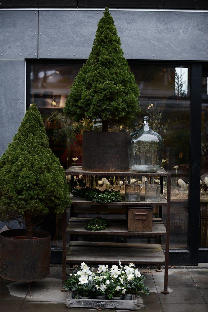 Contemporary industrial florist shops | Zetas Trädgård