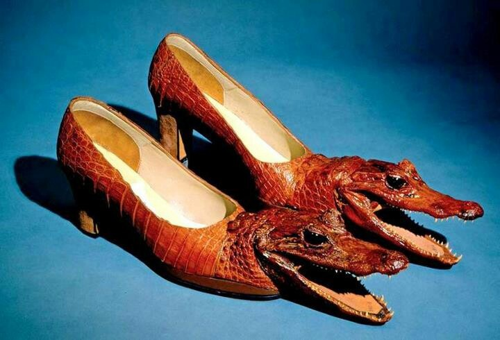 #chaussure croco Ah quelle horreur !!!