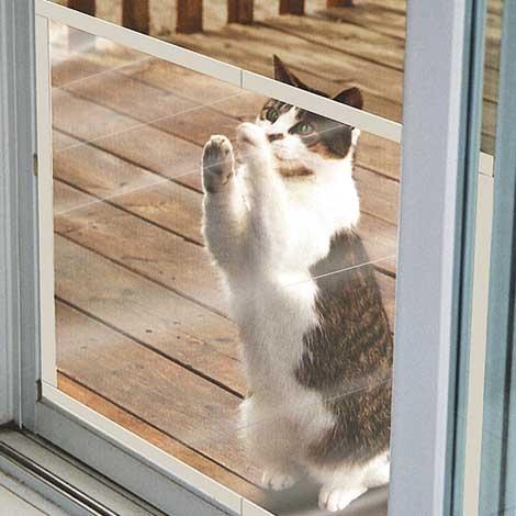 Claws Off Screen Door Protector - need for kids