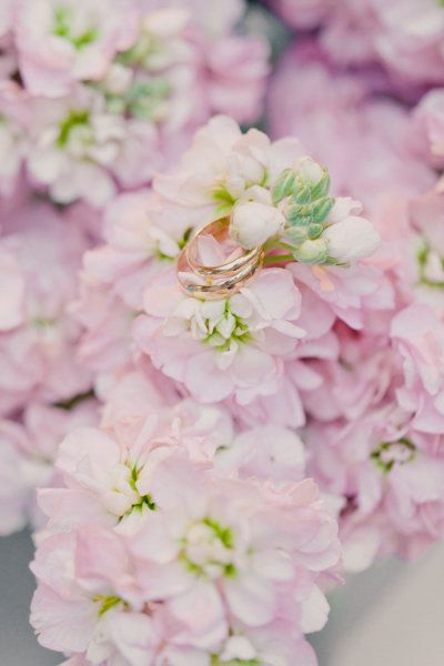 soft pink stock flower detail // photography by mademoisellefiona.com