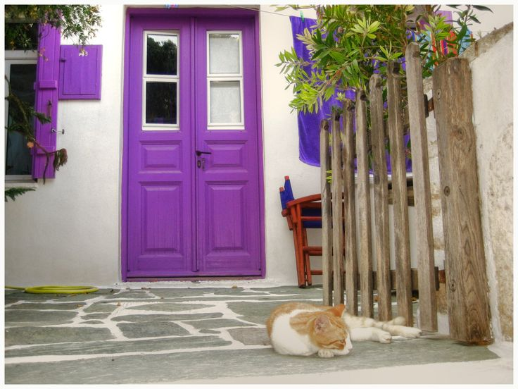 """purple door, by MrSandmanGR, """"A lazy cat enjoys the silent and peaceful time on the front door of a small, traditional house. The heat is such that she doesn't seem to be disturbed by our presence."""" Greece"""
