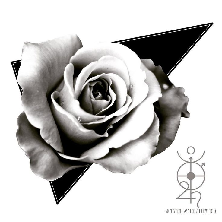 TriRose available for tattooing.  Message me to get booked in for a free tattoo. #tattoo #tattooapprentice #tattooidea #digitalart #blackandwhitetattoo #triangle #rose #realism