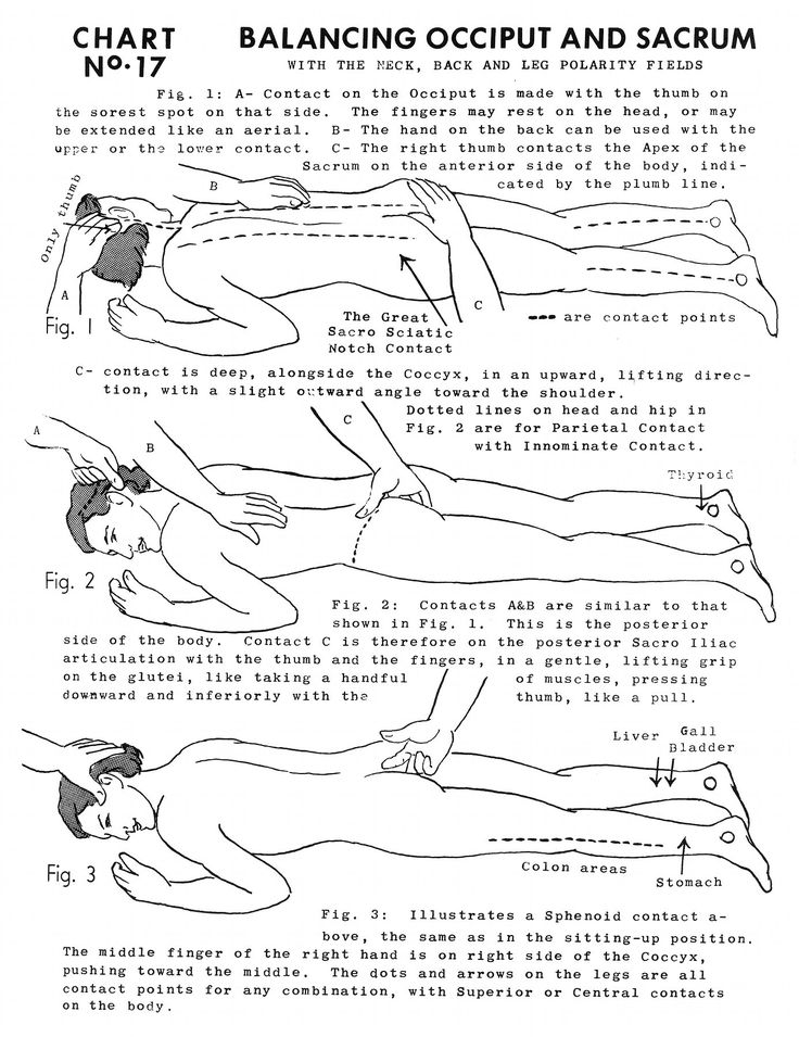 Polarity Therapy Volume 2, Book 5, Chart 17