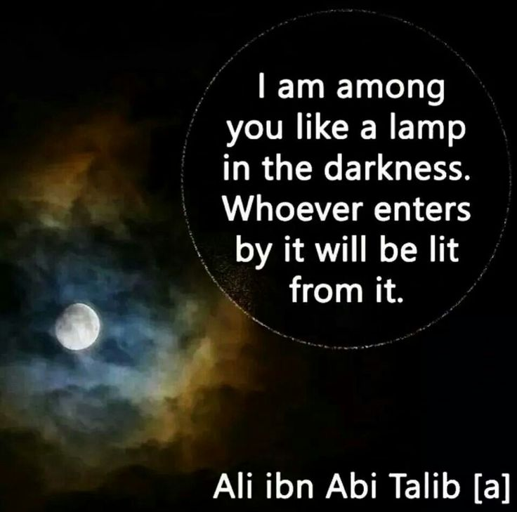 """""""I am among you like a lamp in the darkness. Whoever enters by it will be lit from it."""" -Imam Ali (AS)"""
