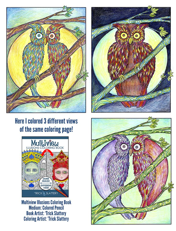 1 Birds or 1 Owl? Coloring Page  #coloring #coloring #coloringbook #coloringbook #adultcoloring #adultcolouring #opticalillusions #coloringforadults