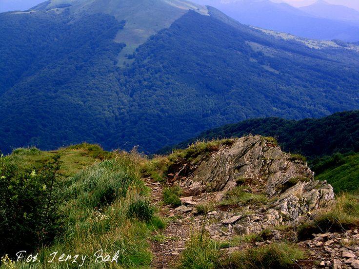 Bieszczady mają wspaniałe szlaki dla niezbyt zaawansowanych piechurów. Widoki warte każdego wysiłku. Polecam.  http://salvadofotografia.blogspot.com/2013/09/moje-podroze-po-ukochanej-polsce.html
