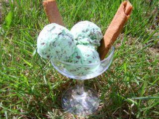 Glace menthe-chocolat sans sorbetière