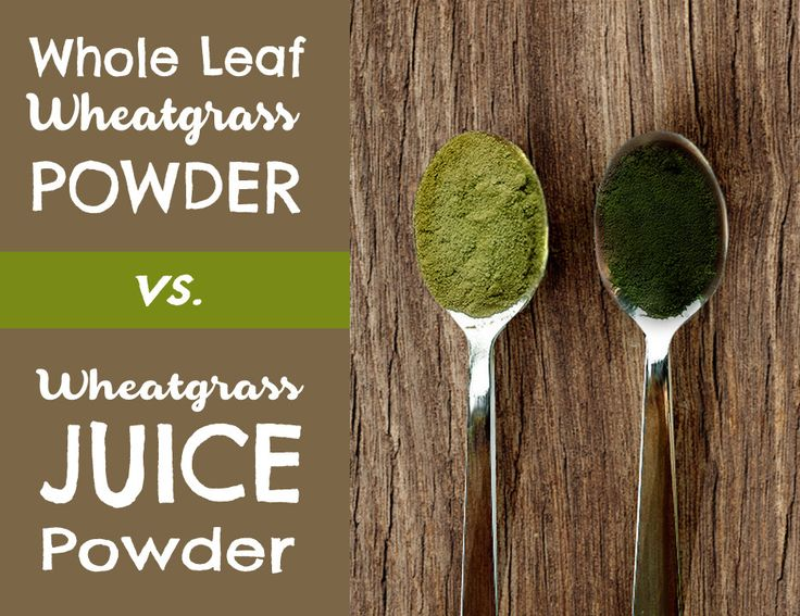 Wheatgrass is beneficial to the body. Some people like whole leaf wheatgrass powder, while some loves wheatgrass juice powder. Let's discuss Whole Leaf Wheatgrass Powder vs. Wheatgrass Juice Powder. Click here for details: https://nurturedbynaturefoods.com/blogs/recipes-blog/whole-leaf-wheatgrass-powder-vs-wheatgrass-juice-powder #nutrition #wheatgrass #wheatgrassjuice #healthydiet #healthydrinks #makingfamilieshealthy #makinghealthyeasy #nbnfoods #nurturedbynature