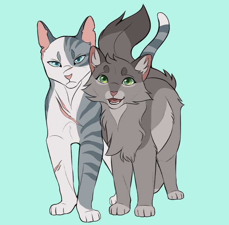 Warriors Fire And Ice Word Count: Ivypool And Dovewing