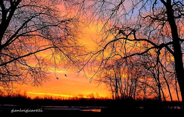 #Ticino, un'alba di primavera. Pic: Gianluigi Carelli. #Lomellina #ambiente #Milano