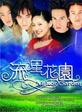 #22 Meteor Garden, one of the best Taiwanese/Asian TV series ever !