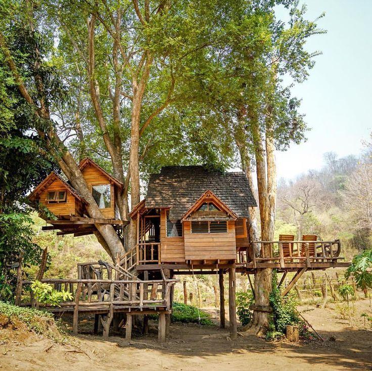 Happy home designer treehouse.