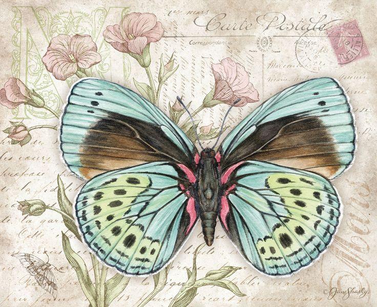 Ланг марта 2014: Бабочки