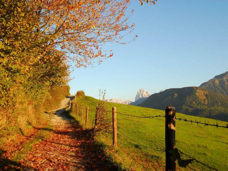 Herbst in Südtirol, Herbsturlaub in Südtirol, Törggelen ...
