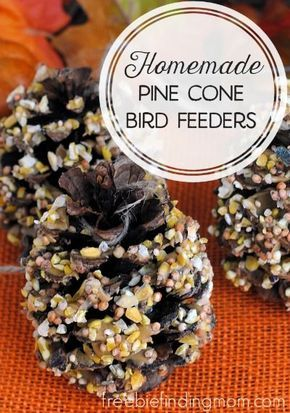 """Homemade Pine Cone Bird Feeders - Mother nature provides the main """"ingredient"""" in these easy fall crafts. Using pine cones are the perfect way for you and the kids to partake in a fun, frugal and fall inspired project."""