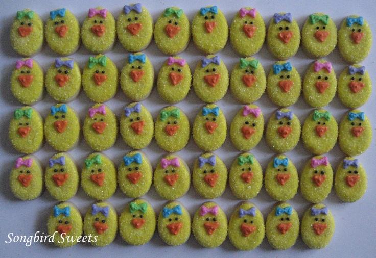 Itsy Bitsy Chicks