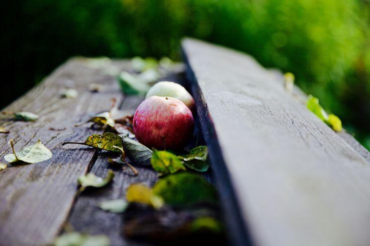 В саду у мамы. PH:Irina Maysova/Ирина Майсова/