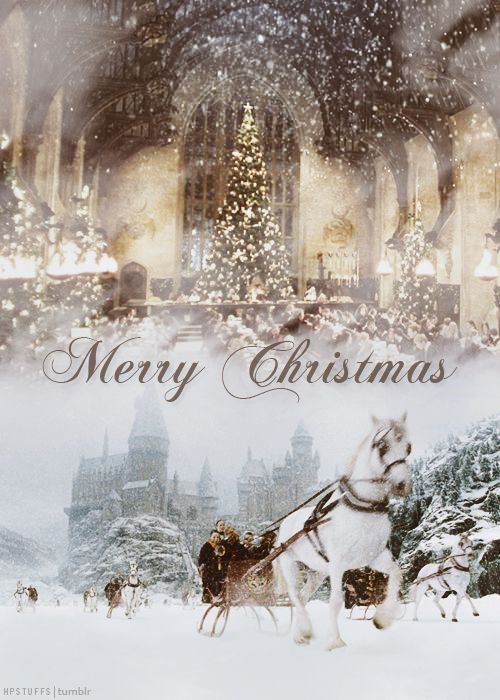 Merry Christmas to all my beautiful followers