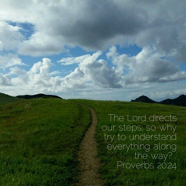 The Lord directs our steps...Proverbs 20:24