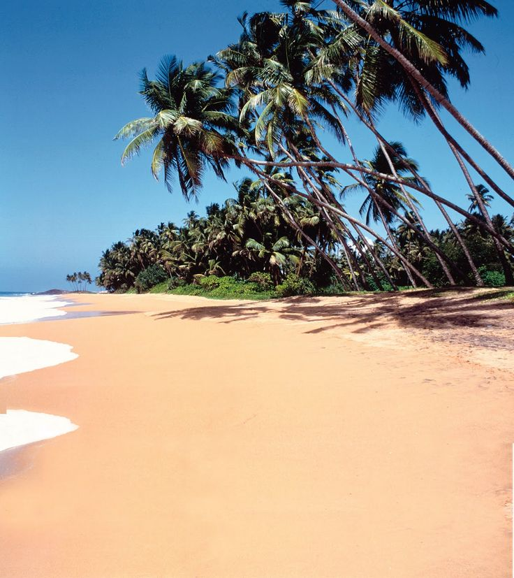 Beruwala is located in the south west cost of Sri Lanka about 60 km from Colombo. It will take an hour's drive to take you to Beruwala and it is treated as the starting point of the southern cost beach resorts.